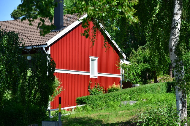 1.1371772800.falun-red-home